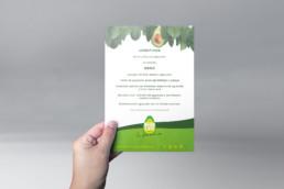World Avocado organization - Mes mundial del aguacate en Bilbao - Sukalmedia
